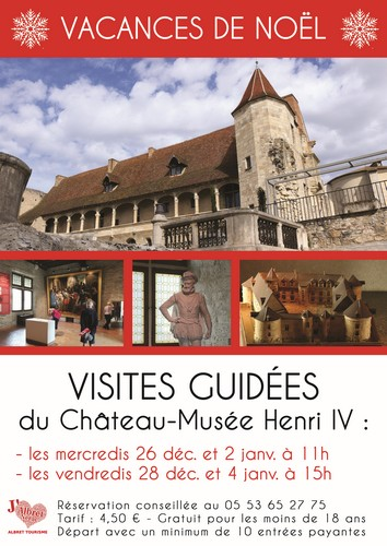 Visites Chateau Musee Henri IV