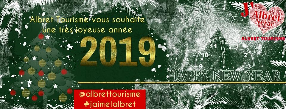 Bandeau voeux 2019