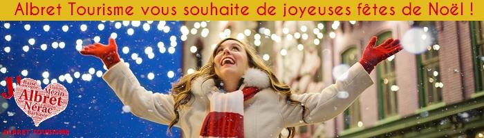 Bandeau newsletter Noël 2018