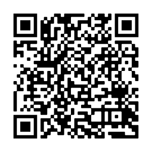 QR Code Audioguide